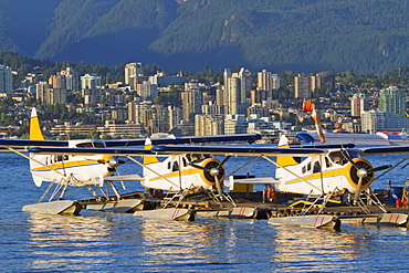 Harbour Air floatplanes at Vancouver Harbour Water Airport, Vancouver, British Columbia, Canada
