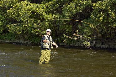 Man Fly Fishing, Grand River, Ontario