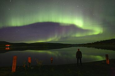 Aurora Borealis, Teslin Lake, Yukon