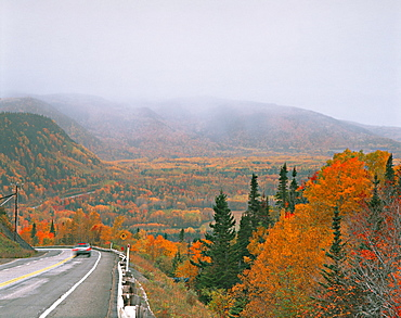Fog in in Fall Trees, Riviere-la-Madeleine, Quebec