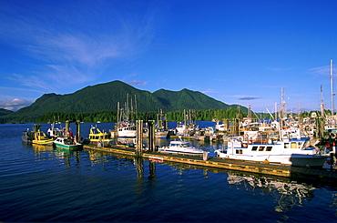 Tofino Harbour Docks, Tofino, Vancouver Island, British Columbia, Canada
