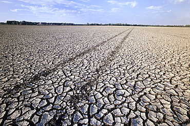 Farmland affected by Drought