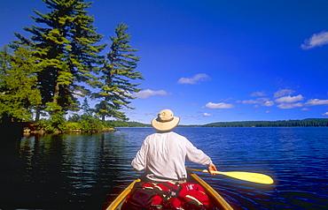 Canoeing, Big Trout Lake, Algonquin Park, Ontario