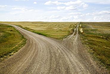 Fork in the Road, Saskatchewan