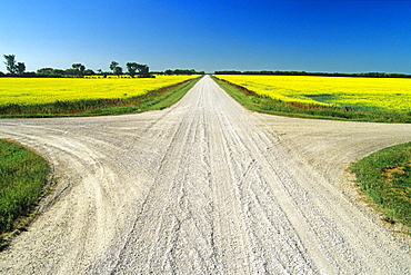 Intersection in a Gravel Road, Niverville ,Manitoba