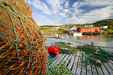 View of Harbour and Village, Salvage, Newfoundland