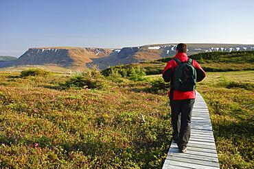 Hiker on Lookout Trail and Tablelands, Gros Morne National Park, Newfoundland