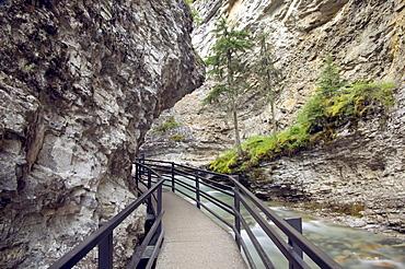 Boardwalk along Johnson Canyon, Banff National Park, Alberta, Canada