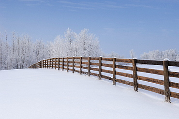 Fence in a winter wonderland, Strathcona County, Alberta