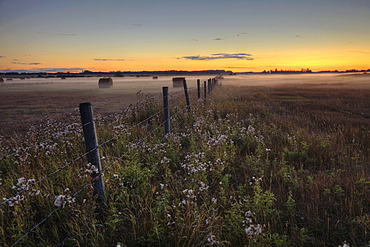 Summer sunset over mist-covered pasture, central Alberta
