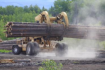 'Le Tourneau' log loader working in sawmill log yard, Houston, British Columbia