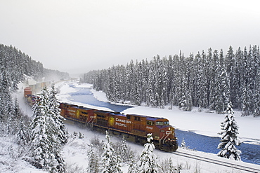 Canadian Pacific train at Morant's Curve along the Bow River, Banff National Park, Alberta