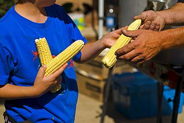 Boy Holding Fresh Corn, Lincoln Gardens, Lumsden, Saskatchewan