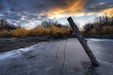Fence Post and Barbed Wire Sticking Out of a Frozen Pond, Alberta