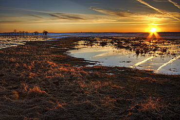 Field Flooded from Thawing Snow at Sunset, Namao, Alberta