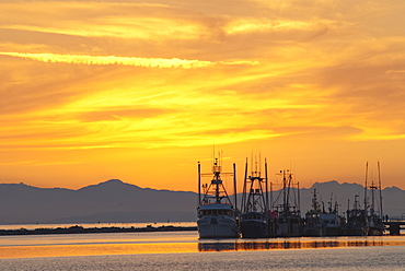 Fishing vessels at sunset with Vancouver Island mountains in the background, Richmond, British Columbia