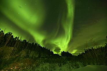 Aurora Borealis above Teslin, Yukon