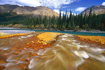 Creek flows into the Waters of the Snake River, with the MacKenzie Mountains in the background, Mayo, Yukon