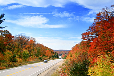 Car on a Tree Lined Highway in Autumn, Algonquin Park, Ontario
