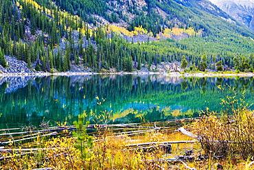 Horseshoe Lake and fall colours, Jasper National Park, Alberta