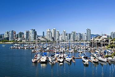 View from Millbank, False Creek, Vancouver, British Columbia