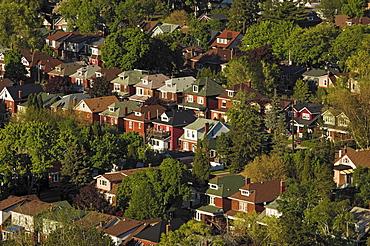 View of Residential Neighborhood Near Gage Park, Hamilton, Ontario