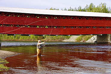Senior Fly Fishing, Matapedia River, Gaspesie Region Quebec