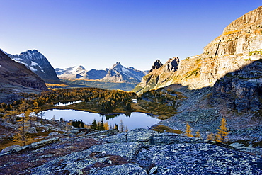 Opabin Plateau, Hungabee Lake and Mountains, Yoho National Park, British Columbia
