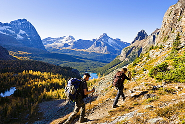Hikers in the Opabin Plateau with Lake O'Hara in the background, Yoho National Park, British Columbia