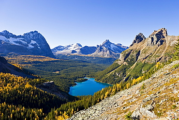 Opabin Plateau and Lake O'Hara, Yoho National Park, British Columbia