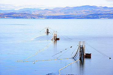 Eel Fishery in the St. Lawrence River with Mountains of Charlevoix Region in the background, Bas-Saint-Laurent Region, Saint-Denis, Quebec