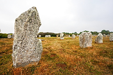 Menhirs in the Le Munec alignments, Carnac, Morbihan, France