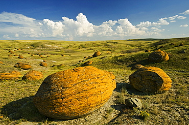 Sandstone concretions in Red Rock Coulee Natural Area, Alberta
