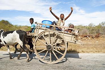 People on a bullock cart near Antsokay, Toliara Province, Madagascar