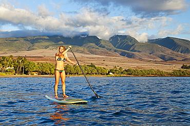 Hawaii, Maui, Woman stand up paddling in ocean just off Canoe Beach, Warm sunlight.
