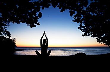 Hawaii, Kauai, Woman meditating along ocean at evening, Tree silhouetted.