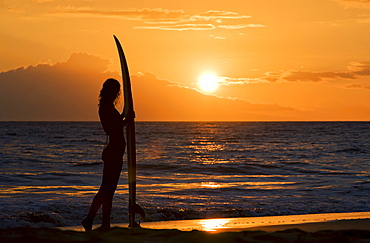 Hawaii, Female surfer on beach silhouetted against orange sunset over ocean.