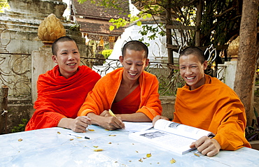 South East Asia, Laos, Luang Prabang, Three young monks sudy in the temple garden.