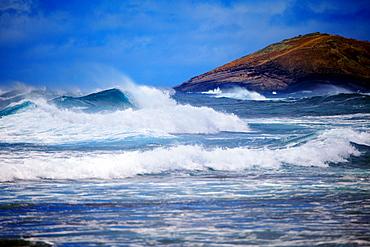 Hawaii, Oahu, Beautiful wave breaking, shot between Sandy's and Makapu'u.