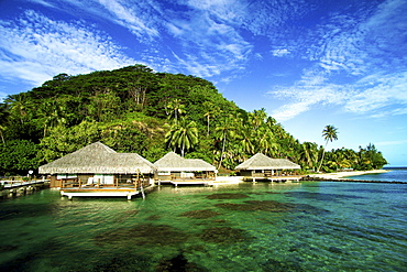 French Polynesia, Huahine, Te Tiare Resort bungalows over ocean, tall palm trees along beach, blue sky