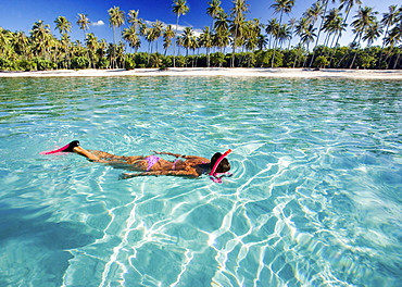 French Polynesia, Moorea, Woman free diving in turquoise ocean.