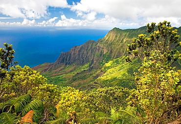 Hawaii, Kauai, Na Pali Coast, Kalalau Valley, View from Kokee State Park.
