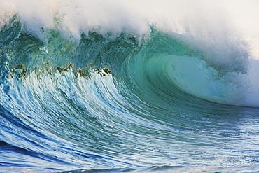 Hawaii, Oahu, North Shore, Beautiful wave breaking.