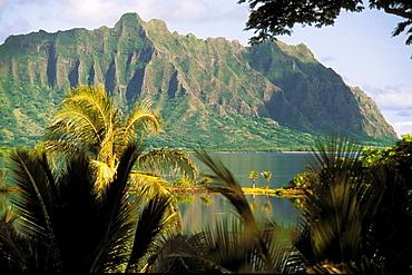 Hawaii, Oahu, Kaneohe fishponds at Heeia area, mountain in background