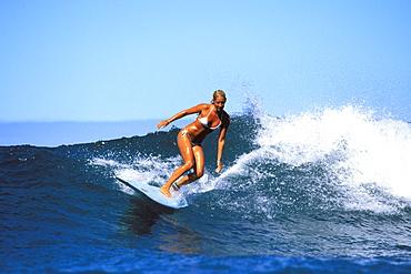Surfer girl, Jessica Bishop riding a wave