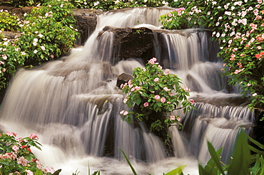 Hawaii, Lanai, Waterfall surrounded by impatiens