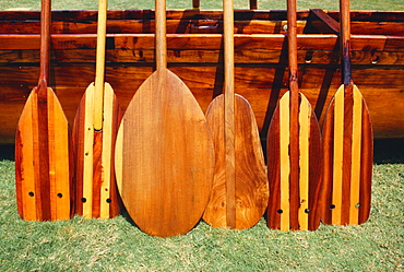 Hawaii, Different shaped canoe paddles in front of koa canoe