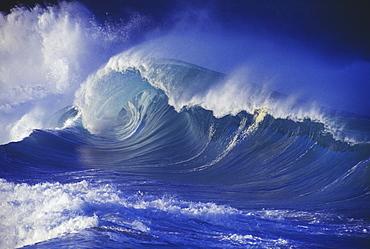 Hawaii, Oahu, Waimea Shorebreak, side view large, misty wave coming in to shore