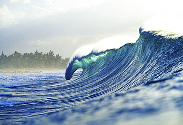 Hawaii, Oahu, North Shore; green wave curling with mist blowing off tip, beach in background