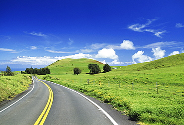 Hawaii, Big Island, Waimea ranch land, road curving through lush pasture.